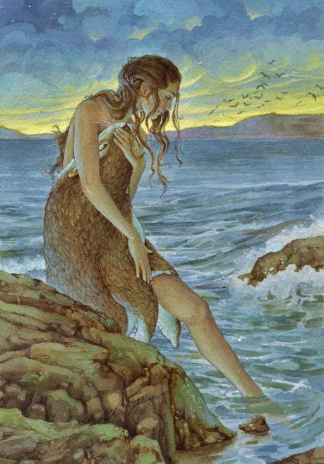 Pele de foca, pele da alma – conto tradicional