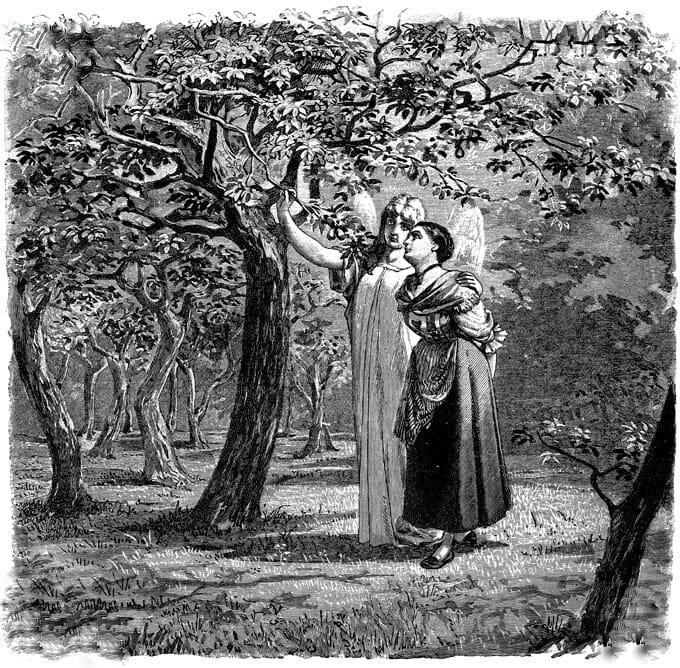A donzela sem mãos – Irmãos Grimm (terceira e última parte)