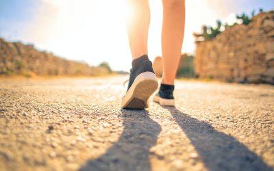 Por que é tão difícil adotar bons hábitos e abandonar os que nos fazem mal?